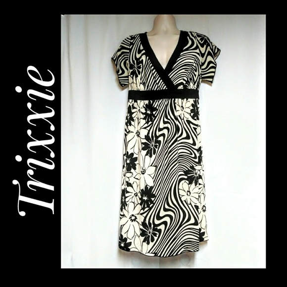 Trixxi Dresses & Skirts - Trixxi Black Cream Floral Stripes Dress Size 18